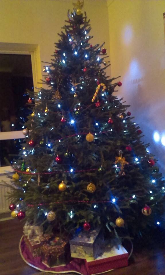 decorated Christmas tree from Meadow Lane Christmas Tree Farm Galway