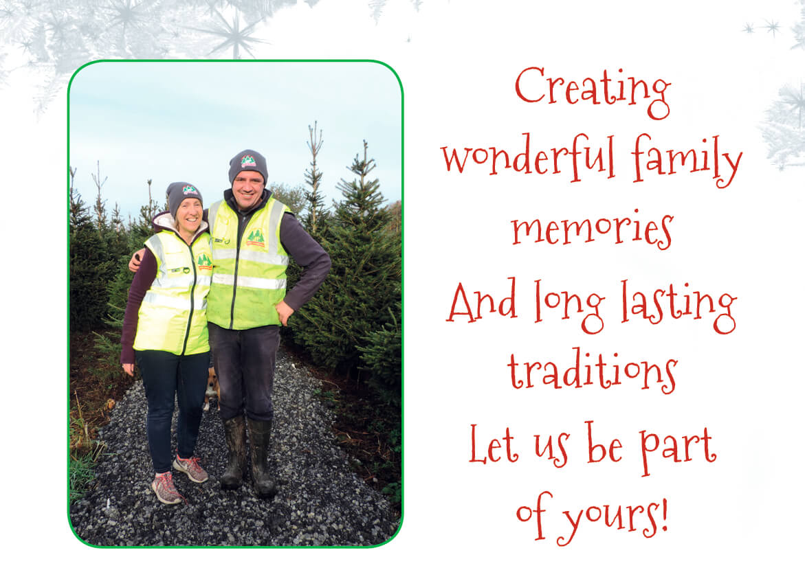 About Meadow Lane Christmas Trees Farm Galway, Ireland